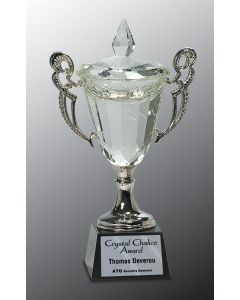 11 1/4 in. Crystal Cup with Silver Handles & Stem
